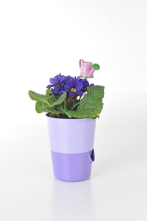 кашпо ROSMARIN с цветами